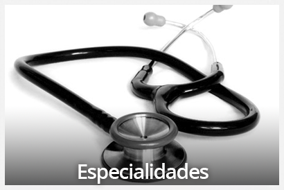 especialidades veterinario Valencia